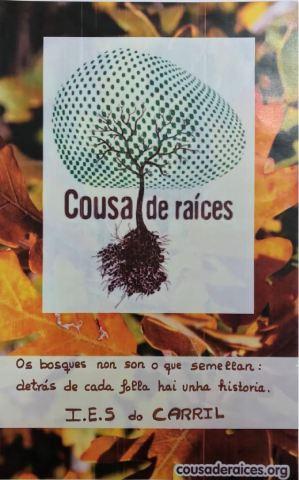 Foto cartel do IES do Carril
